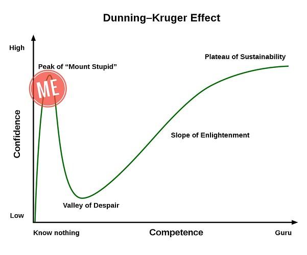 1231px-Dunning–Kruger_Effect_01.svg-01