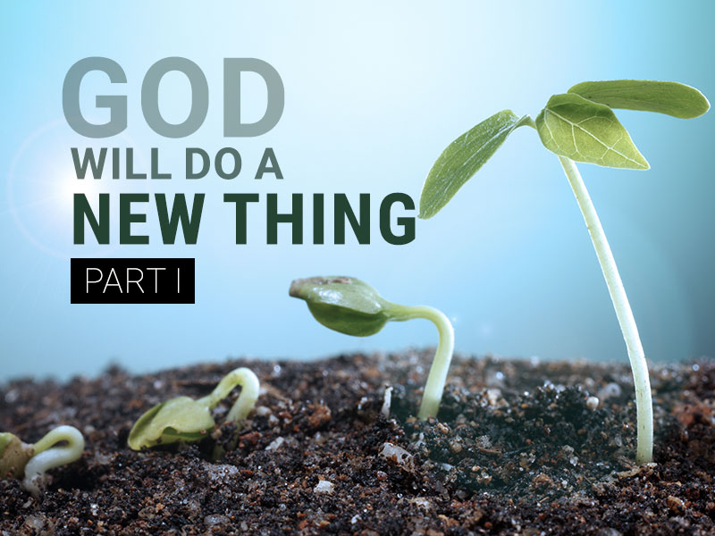 god-will-do-a-new-thing